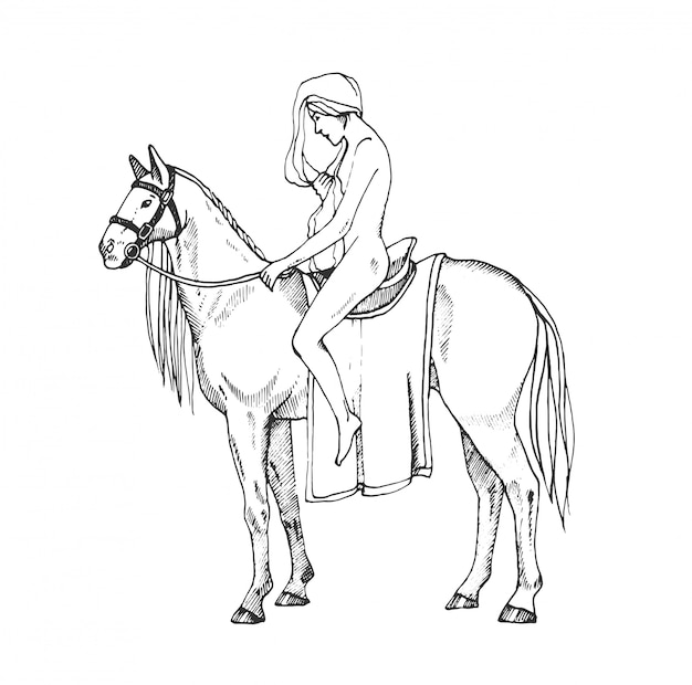 Mulheres nuas, montando um cavalo. lady godiva. ilustração de contorno.