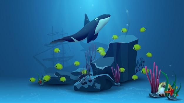 Mundo subaquático, ilustração vetorial com baleia assassina