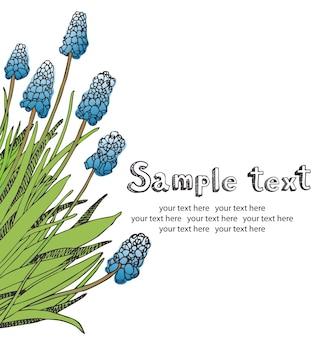 Muscari flores cartão