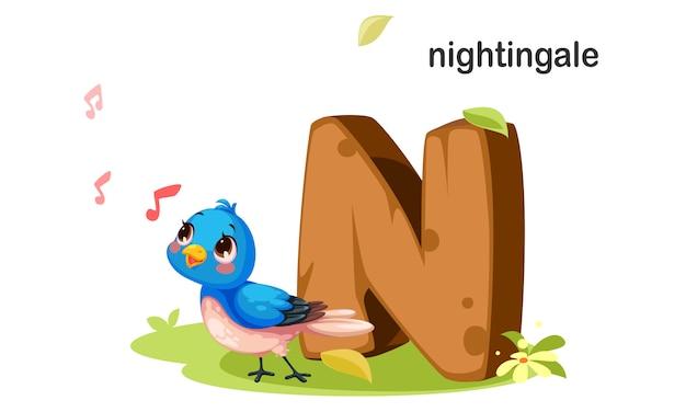 N para nightingale