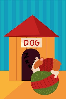 Natal, hamster dormindo em casa de bolinhas de estimação