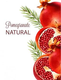 Natural vermelho metade romã cortada com folhas de abeto