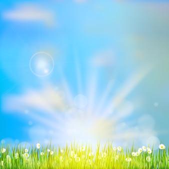 Natureza abstrata de primavera ou verão.