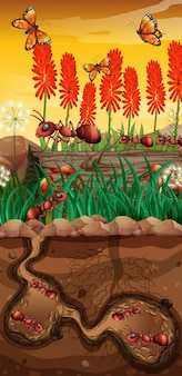 Natureza com borboletas e formigas no jardim
