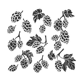 Natureza conjunto de lúpulo forma artística ilustração sinal coleção de ervas de folha de cone