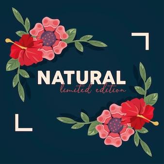 Natureza de pôster de moldura floral com design de ilustração de palavra natural
