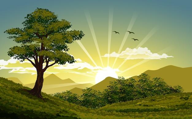 Natureza do nascer do sol