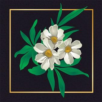 Natureza floral da folha do vintage da flor branca