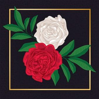 Natureza floral da folha do vintage da flor de rosa vermelha e branca