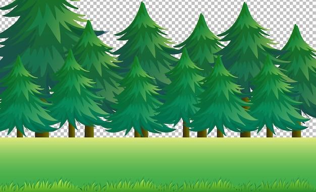 Natureza paisagem ao ar livre