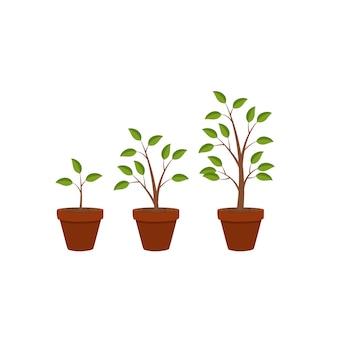 Natureza plana abstrata crescimento de plantas fundo gráfico, ve