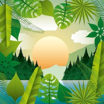 Natureza tropical