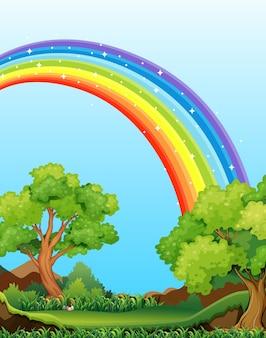 Natureza vista da floresta com arco-íris no cenário do céu