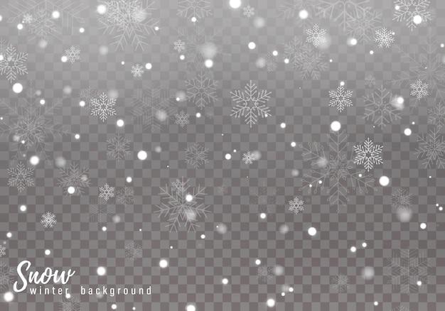 Neve caíndo. flocos de neve caindo realistas isolados em fundo transparente.