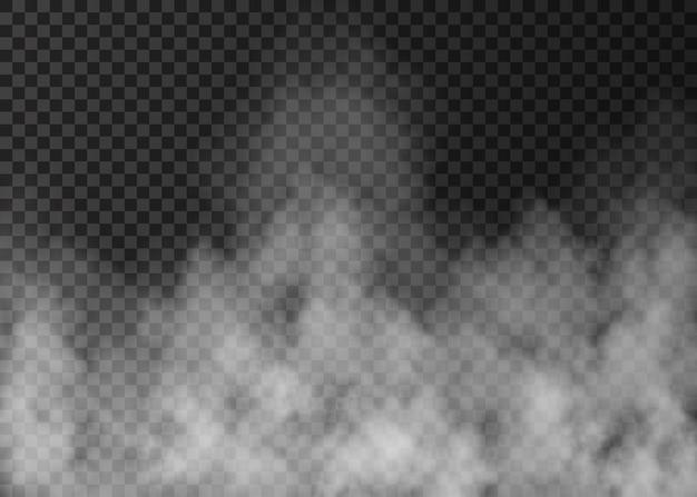 Névoa branca isolada em transparente