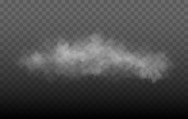 Névoa ou fumaça isolado transparente efeito especial branco vetor neblina neblina ou fumaça fundo vec ...