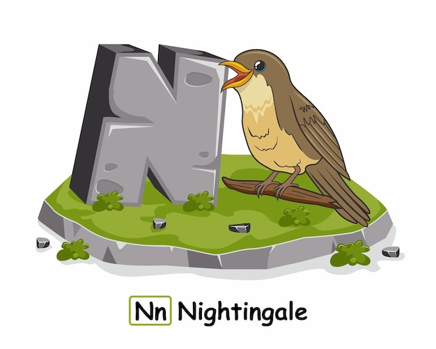 Nightingale bird alphabet rock stone n animals