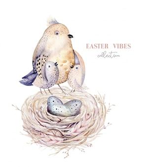 Ninho de pássaro aquarela mão desenhada com ovos, design de primavera de páscoa