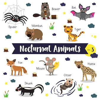 Nocturnal animal cartoon com nome de animal