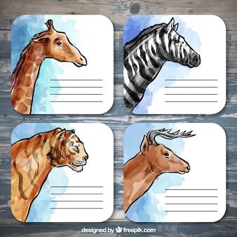 Notas de aquarela animais selvagens