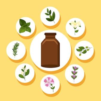 Nove elementos de óleos essenciais