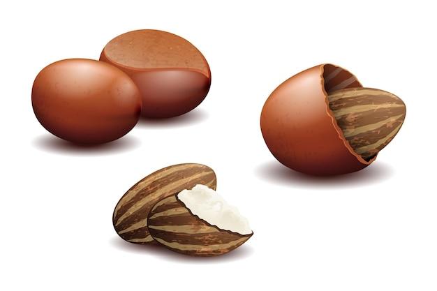 Nozes de karité e manteiga de nozes de karité. semente orgânica natural útil,