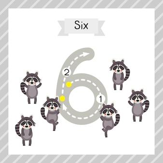 Número 6 rastreamento de animais cartão flash
