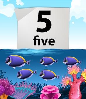 Número cinco e peixes nadando debaixo d'água