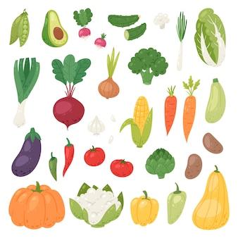 Nutrição saudável de legumes de pimenta de tomate e cenoura para vegetarianos que comem alimentos orgânicos de mercearia ilustração vegetated conjunto dieta isolada no fundo branco