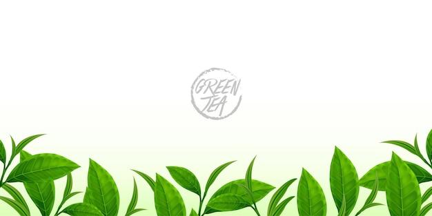 O chá verde premium para ilustração vetorial de boa saúde.