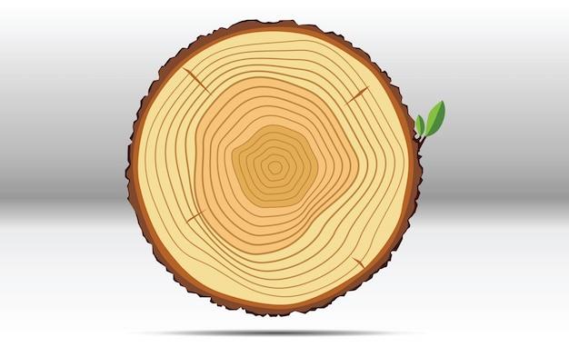 O crescimento da árvore anilha a madeira