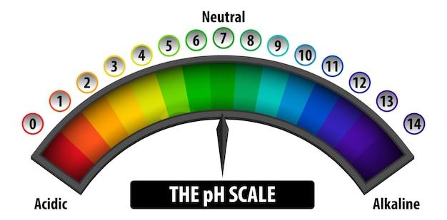 O diagrama de escala de ph em fundo branco