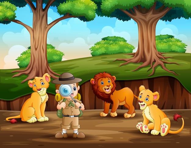 O explorador com leões na floresta