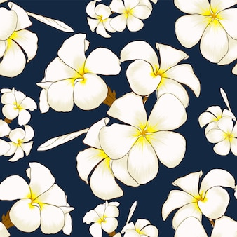 O frangipani branco do teste padrão sem emenda floresce a obscuridade - fundo abstrato azul.