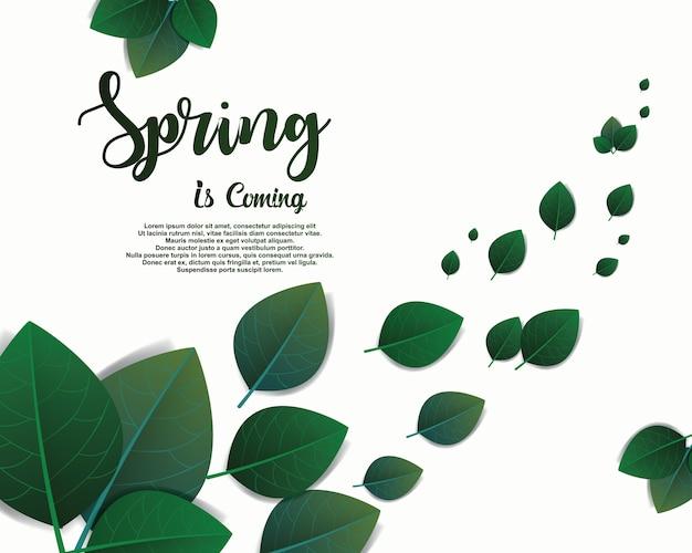 O fundo verde da folha vai conceito verde