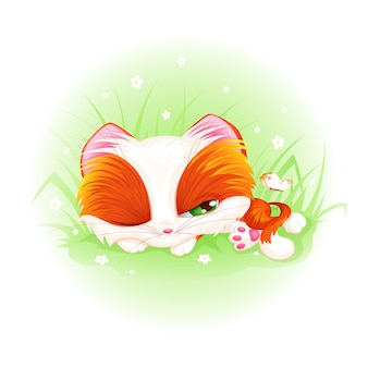 O gatinho vermelho bonito dorme e olha a borboleta.