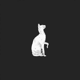 O gato sphynx