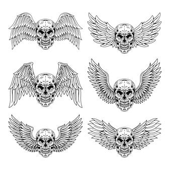 O grupo do vintage de crânios voados isolou a ilustração retro do vetor.