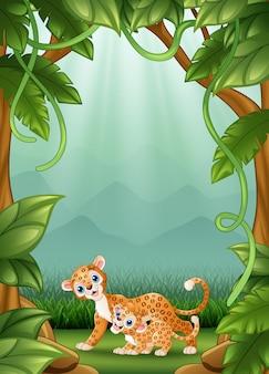 O leopardo feliz uma atividade na selva
