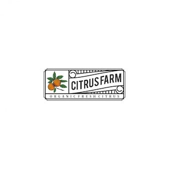 O logotipo cítrico, com um estilo vintage e elementos cítricos frescos