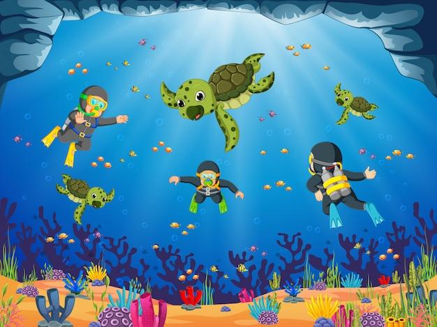 O mergulhador profissional está mergulhando com a tartaruga verde