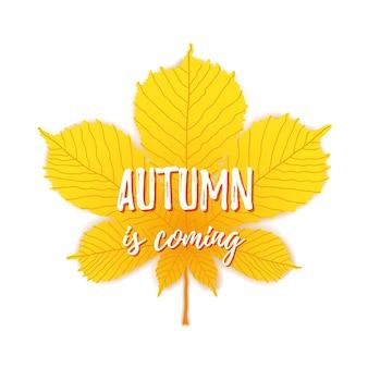 O outono está chegando texto sobre fundo de folha de plátano. banner da temporada de outono do vetor. cartão com inscrição