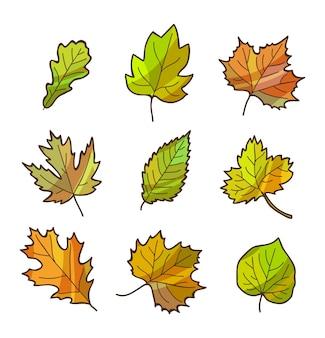 O outono ou as folhas da queda ajustaram-se, isolado no branco. estilo simples dos desenhos animados.