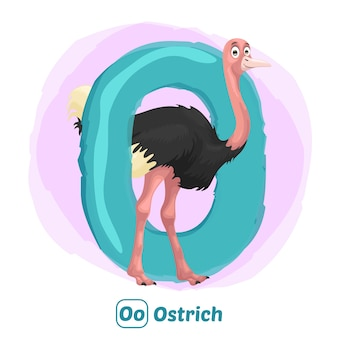 O para avestruz. estilo de desenho de ilustração premium de animal do alfabeto para educação