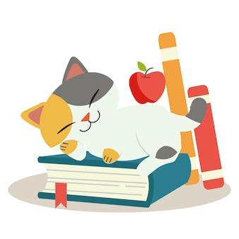O personagem do gato fofo dorme no livro