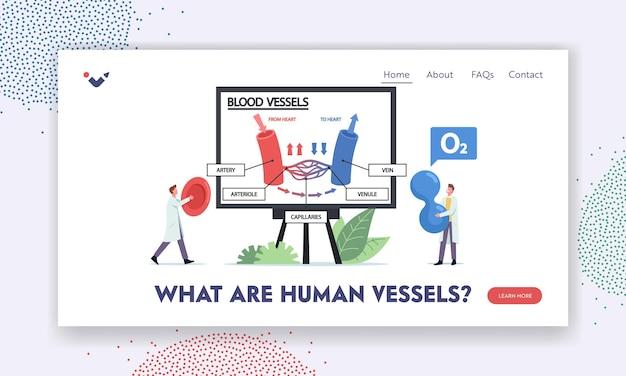 O que são modelos de página de destino de embarcações humanas. personagens de minúsculos médicos apresentando enormes infográficos de veias sanguíneas, vasos arteriais ou arteríola. médico com célula sanguínea. ilustração em vetor desenho animado