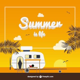 O verão é a vida