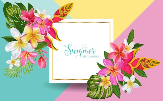 O verão está chegando. flores tropicais exóticas emolduradas ilustração