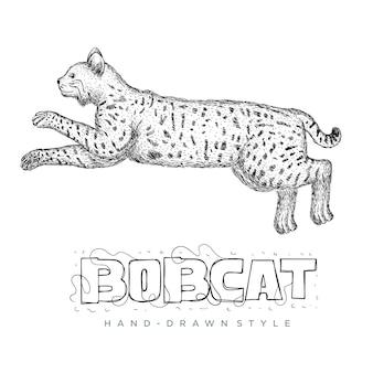 O vetor bobcat está funcionando rápido. ilustração animal desenhada à mão