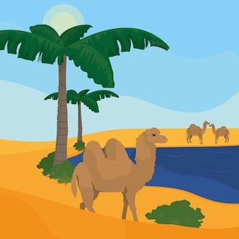 Oásis no deserto